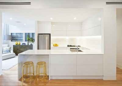 SOUTH YARRA PROJECT